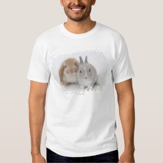Two Netherland Dwarf and Holland Lop bunnies T-shirts