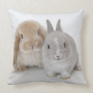 Two Netherland Dwarf and Holland Lop bunnies Throw Pillow