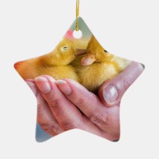 Two newborn yellow ducklings sitting on hand ceramic ornament