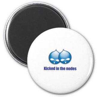 two nodes fridge magnets