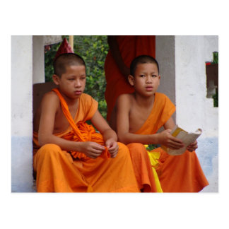 Two Novice Monks Studying Postcard