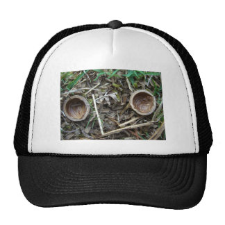 Two nut shell halves 1 hat