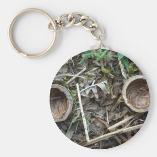 Two nut shell halves 1 key chains