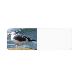 TWO OCEAN SEAGULLS WAVES ROCK BEACH PHOTOGRAPHY BI LABEL