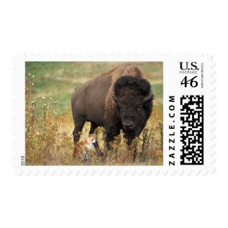 Two of a Kind Postage