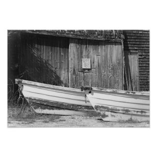 Two Old Rowboats B&W Nautical Boat Poster