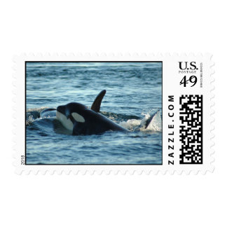 Two Orcas Stamps