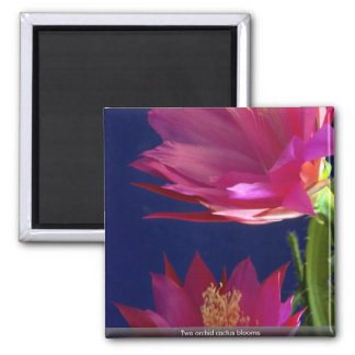 Two orchid cactus blooms fridge magnets