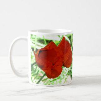 Two Oriental Poppies Coffee Mug