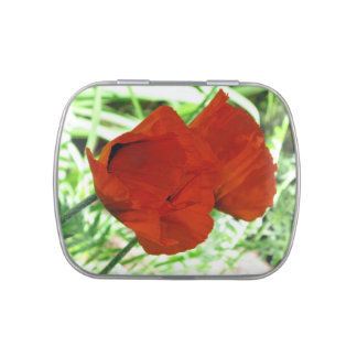 Two Oriental Poppies Jelly Belly Tins