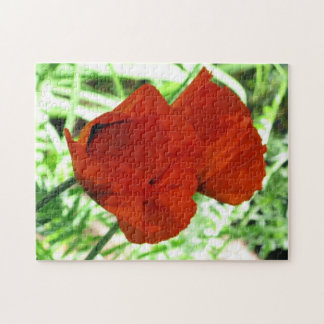Two Oriental Poppies Jigsaw Puzzle