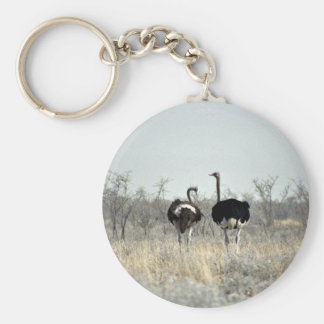 Two ostriches keychains