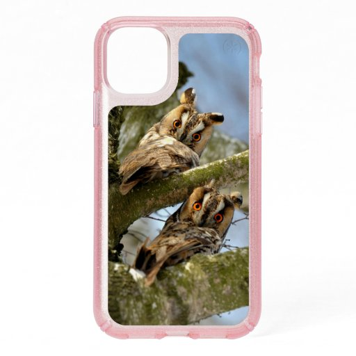 Two Owls in the Woods, birds, wildlife Speck iPhon Speck iPhone 11 Case