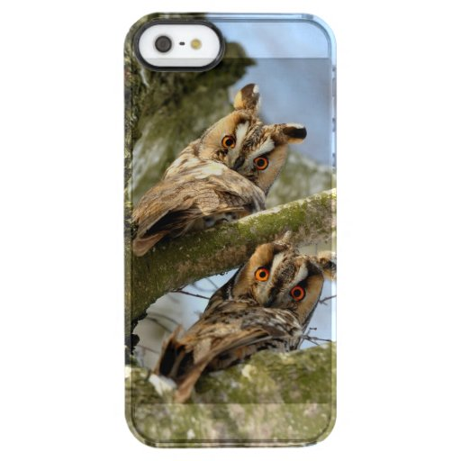 Two Owls in the Woods, birds, wildlife Uncommon iP Clear iPhone SE/5/5s Case