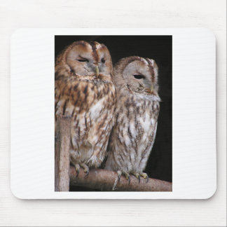 Two Owls on a Metal Bar at Night Photo Design Mouse Pad