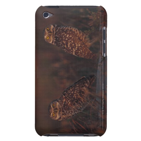 Two Owls on Sand Barely There iPod Cover