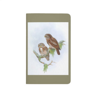 Two owls sitting in a tree. Vintage drawing Journal