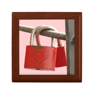 Two Padlocks on a Fence Gift Box