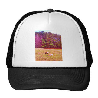Two Painted Horses Trucker Hat