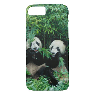 Two pandas eating bamboo together, Wolong, 2 iPhone 8/7 Case