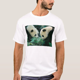 Two pandas eating bamboo together, Wolong, T-Shirt