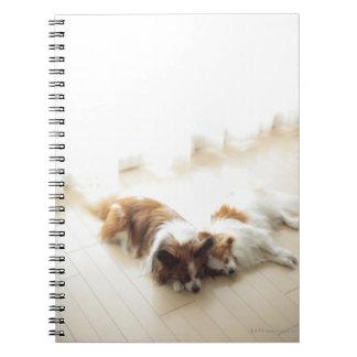 Two Papillion sleeping Spiral Notebook