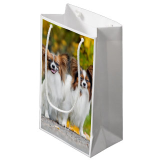 Two Papillon dogs in autumn Small Gift Bag