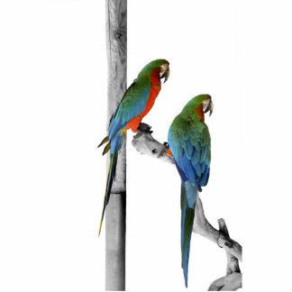 Two parrots standing photo sculpture