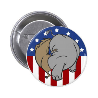 Two Party System Explained Pins