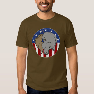 Two Party System Explained T Shirt