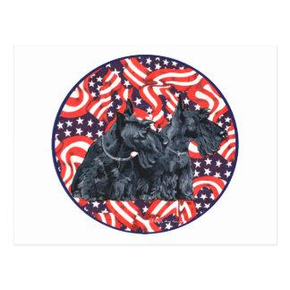 Two Patriotic Scottish Terriers Postcard