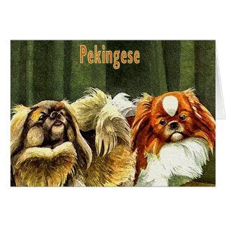 Two Pekingese Dogs Card