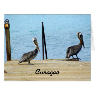 Two pelicans on the pier, Curacao, Big Greeting Card