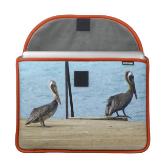 "Two pelicans on the pier, Curacao, Caribbean, 13"" MacBook Pro Sleeve"