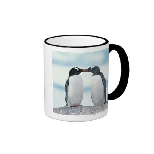 Two Penguins touching beaks Coffee Mugs