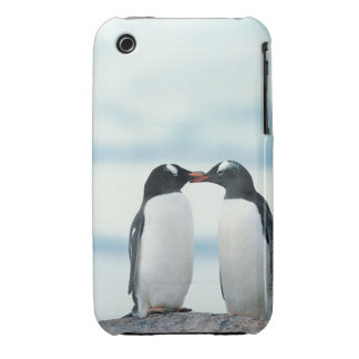 Two Penguins touching beaks iPhone 3 Case