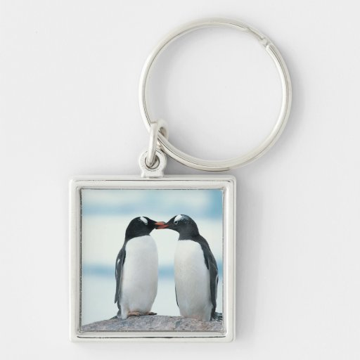Two Penguins touching beaks Keychain