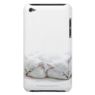 Two Persian Kittens iPod Touch Case