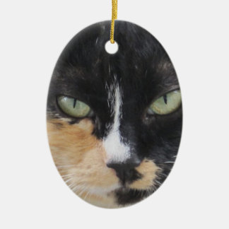 Two Pets Ornament