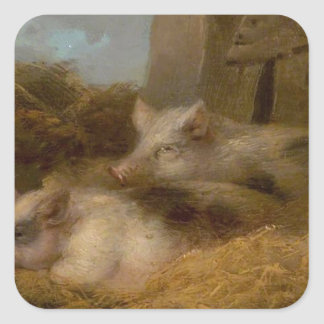 Two Pigs in Straw (Barn with Pigs) by George Morla Square Sticker