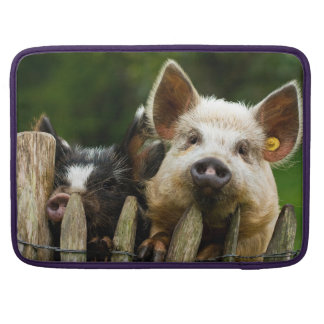 Two pigs - pig farm - pork farms sleeve for MacBook pro