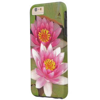 TWO PINK LOTUS BLOSSOMS ON LILY PADS TOUGH iPhone 6 PLUS CASE