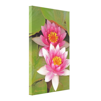 """TWO PINK LOTUS BLOSSOMS"" WRAPPED CANVAS VERTICAL CANVAS PRINT"