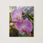 Two Pink Orchids Jigsaw Puzzles