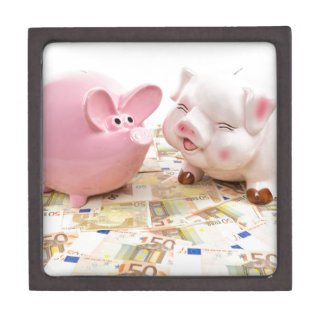 Two pink piggy banks on spread euro notes keepsake box