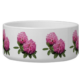 Two Pink Rhododendrons Bowl