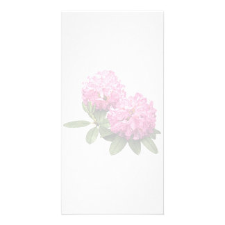 Two Pink Rhododendrons Personalized Photo Card