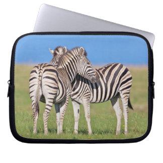 Two Plains zebra (Equus quagga) on coastal Laptop Sleeves