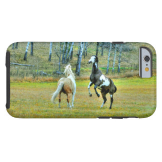 Two Playful Pinto Paint Horses Equine Art Design 2 iPhone 6 Case