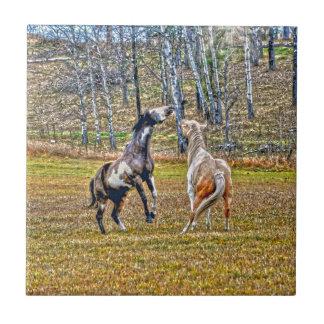 Two Playful Pinto Paint Horses Equine Art Design Ceramic Tile